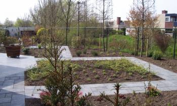 Praktische tuin in roosendaal hagedoorn hoveniers